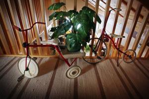 Anders Sten har sparat sina första cyklar. Som 15-åring började han jobba som cykelhandlare.