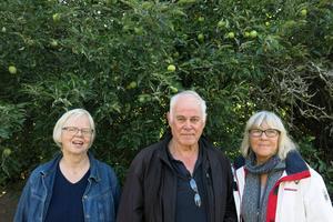 Kristina Hermanson Åreng, Hans-Gösta Henriksson och Birgitta Bergander är några av dem ser till att det alltid är någon på plats vid trädet.