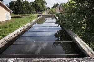 Hotasa den småskaliga vattenkraften? bilden visar intagstråget till vattenkraftstationen i Brevens Bruk.