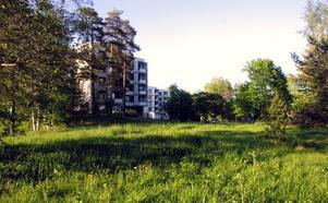 Hittills i år har elva barn vräkts i Gävle kommun. Nu är kommunen kallad till samtal hos Barnombudsmannen.
