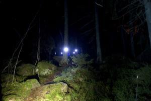 Det är mörkt och svårt att se var man sätter fötterna. Men öar av ljus lyser upp på olika håll i skogen. Gefle Dagblad fuskade med en ficklampa.