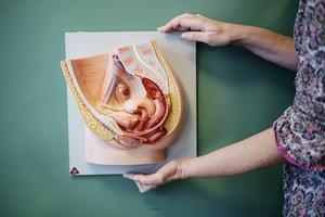 Endometrios är en sjukdom som ofta orsakar kraftig smärta vid exempelvis mens, sex eller toalettbesök. Foto: Pi Frisk/SvD/TT