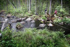 """Ett glädjande besked för sportfiskeintresserade – insatserna i projektet """"Triple lakes"""" fokuserar delvis på att förbättra förutsättningarna för fisklek i flera vattendrag.   – Vi kommer också förbättra lekplatser för röding i både Locknesjön och Näkten, berättar projektledare Malin Bernhardsson."""