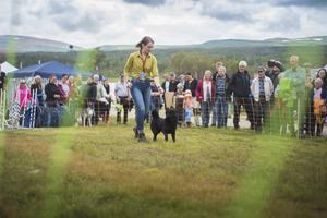 Tova-Liza Willenfeldt tillsammans med hunden Lita. Här visade hon hur tävlingslydnad går till och hur du tränar din hund med en clicker.