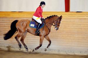 Sabine Persson och Insentia SP var trea i en medelsvår 1,30 i Sundsvall.