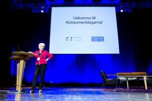 Karin Lindell har uppdraget att förbättra patientskyddet för dem som genomgår skönhetsoperationer. I dag är skyddet i i Sverige uruselt, säger hon.