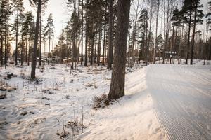 Ett stenkast från skidspåret planerar skidstjärnorna Mathias Fredriksson och Emil Jönsson att bygga bostäder.