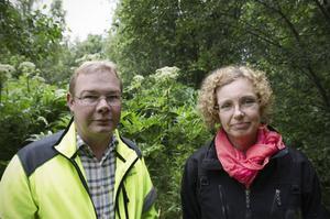 Per Molin och Elisabeth Walldén från kommunen är nöjda med att jättebjörnlokan eliminerats. Nu följer år av efterkontroll.