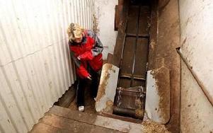 Det var här som Ulrica stack in handen och fastnade i transportbandet som sköter utgödslingen.