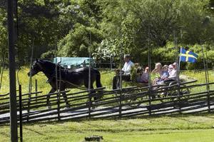 Häst med vagn. Många passade på att åka en sväng runt hembygdsgården.