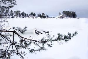 Här vid Finnickaviken finns ett av de 33 planerade Lis-områdena.
