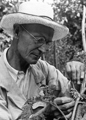 Herman Hesse, (1877-1962) var en tyskfödd schweizisk författare av poesi och romaner. 1946 belönades han med Nobelpriset i litteratur.