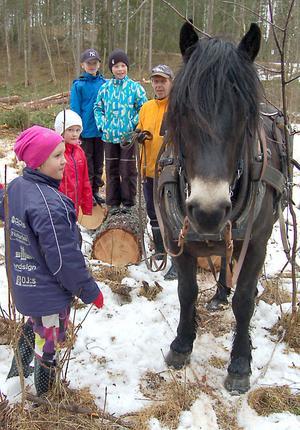 Ole Halse berättade för eleverna om skogsarbete förr i tiden.