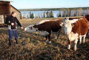 – Jag är stor djurvän och tycker om att arbeta med djur, säger Pelle Frisk som nu prisats för sin djurhållning.