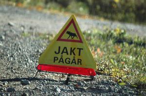 Rovdjursdebatten tillförs oavbrutet nytt material. Håkan Sands konstaterade att vargförekomsten inte är något hot mot älgstammen blir säkert föremål för livlig debatt.
