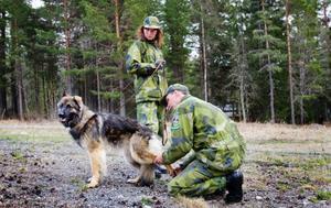 Eva Karlsson med schäfern Segra får tassarna kollade under tillgivenhetstestet.
