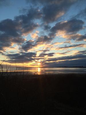 En underbar promenad nere vid havet är bra för både kropp och själ. Det är så magiskt vackert att man blir så berörd att det kan vara så underbart. Vilka färger på himlen fantastiskt vackert. Att ta en promenad vid havet är det bästa jag vet. Sverige är fantastiskt vackert.