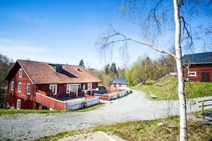 Jämtkraft har inte beslutat vad som ska hända med Strömbacka kvarn och det markområde som finns på bolagets fastighet vid Billstaån.