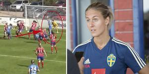 Faksimil: Damallsvenskan.tv/Arkivfoto: Fredrik Sandberg/TT