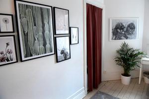 Christin Persson hjälpte familjen att få upp tavlor på väggarna.Foto: Janerik Henriksson / TT