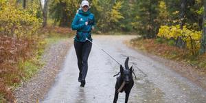 Holländska herdehunden Raptor är en vovve som kräver av matte Stephanie Jonsson att hon också är aktiv.  Duon löptränar en till tre gånger i veckan.