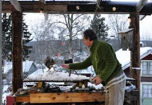 Geert Weggen i Bispgårdenhar specialiserat sig på att fotografera ekorrar utanför köksfönstret i olika miljöer. foto: Katrin Åsander