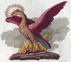 Illustration av Fågel Fenix ur