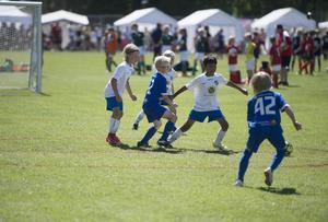 IFK Timrå och Matfors IF pojkar 09.