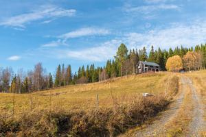 Krok, Kallbygden. Foto: Andreas Ljungqvist.