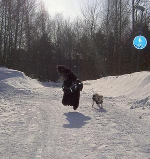 Eter en 2 timmars promenad i det fantastiska vintervädret var det dags för ett race...Hopp och lek i solen...