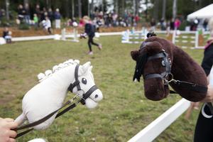 Käpphästen har blivit ett medel för tjejernas frigörelse och för systerskapet. Foto: Henrik Montgomery / TT