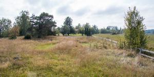 Här är det hagmarksområde i Köpings kommun som Ola Saaw hänvisar till.