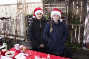 Maya West och Hanna Grannas passade på att tjäna lite pengar, genom att sälja bakverk.