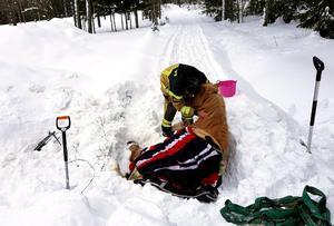 Fårstängslet var helt översnöat och räddningstjänsten tvingades  klippa och gräva loss islandshästen Pila. Bild: Räddningstjänsten