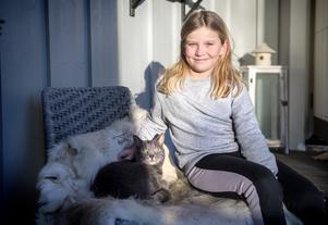 I lugnet hemma på Skottsund med katten Messi har den magiska händelsen fått lägga sig.
