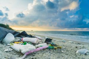 Plastförpackningar i naturen utgör både en fara olika djurarter och kan brytas ned till mikroplaster. Bild: Shutterstock