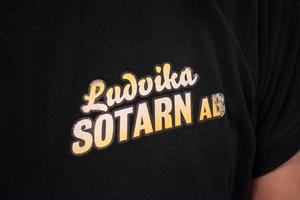 Ludvika är en av de sista kommunerna i landet att flytta över sotningen till privat regi.