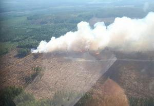 Brattsjö skogsbrand. Foto: Roger Moberg/Mellansels flygklubb