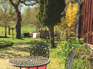 Till våffleriet hör också en rofylld trädgård.