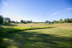 Krokoms kommun erbjuder bönder med djur att slå kommunala grönytor, för att få ett tillskott av grönfoder. Alla kommuner borde göra en insats, anser Hans Boström.