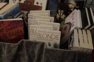 Böcker, böcker och böcker blir det på söndagens litteraturfestival i Hede. Den här bilden är från förra årets festival som hölls i Sveg.