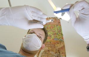 Tandläkaren har att hålla sig till Socialstyrelsens riktlinjer. Foto: Erik G Svensson /TT/