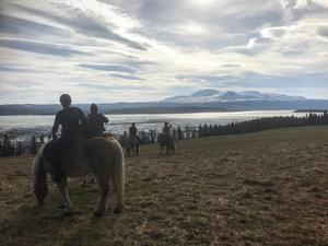 Bild från Instagramkontot Horsebackmemories. På gården bedriver de turridning och har även en fantastisk utsikt.