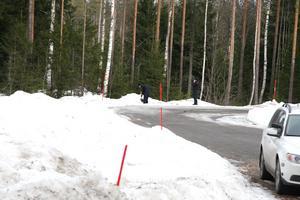 Velmira hittades död i ett skogsparti vid E4:an norr om Gävle, två veckor efter att hon försvann.