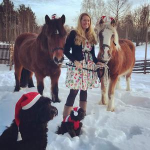 Johanna Jönsson firar jul med familjen, de egna hästarna och hundarna.