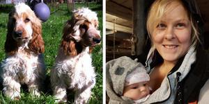 Hundägaren Zandra Andersen i Hemfosa är tacksam för att hjälp och allt stöd familjen har fått i letandet efter hundarna, skriver hon på sociala medier. Foto: Privat