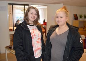 Cecilia Holmqvist och Emilia Risvall från Säter besökte Brunnsviks folkhögskola för att kolla in den allmänna kursen.
