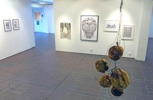 Konsthallens väggar är fulla av teckningar, totalt över 100 verk.