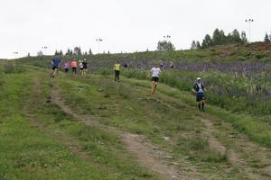 Bilden är tagen strax innan gruppen hittade den skadade mannen i skogen. Foto: Oskar Åkerlund.
