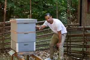 Martin Kesenci beskriver var honungen ligger i en bikupa.